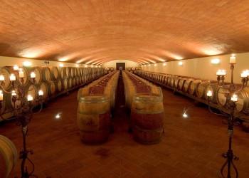 vendita-azienda-vitivinicola-convilla-chianti